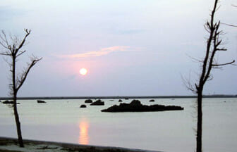 日本の渚・百選「佐和田の浜」